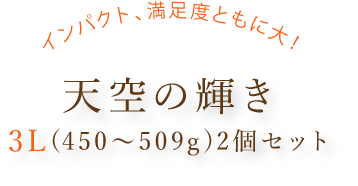 天空の輝き3L(450~509g)2個セットタイトル